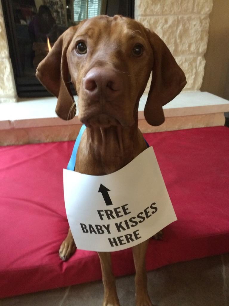 freebabykisses
