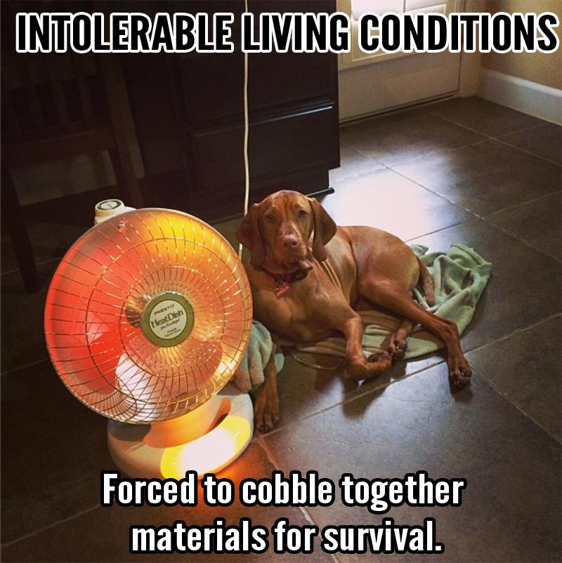 intolerable12