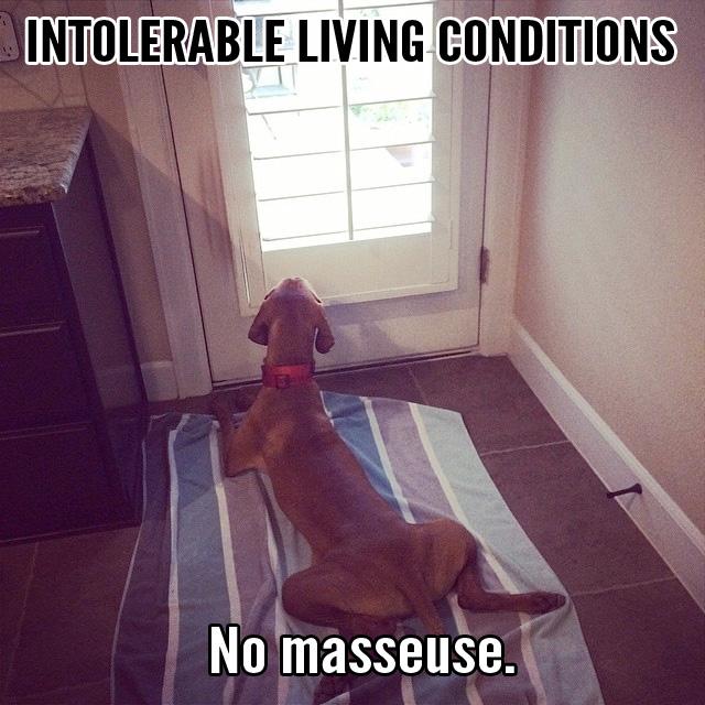 intolerable18
